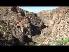 http://www.naturescanner.nl/europa/spanje/andalusie/activiteiten/wandelen-in-andalusie/155