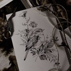"5,289 Likes, 37 Comments - •Diana Severinenko (@dianaseverinenko) on Instagram: ""🌿#bird #sketch #artmagazine #artwork #artgalery #worldofartists #art_spotlight #sketch_daily…"""