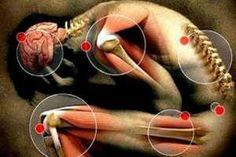 Tratamientos naturales para los Dolores Articulares aprovechando las Propiedades Curativas de las Plantas Medicinales. SIGUE LEYENDO EN http://alimentosparacurar.com/n/285/plantas-medicinales-para-dolores-articulares.html