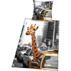 Giraffe New York -pussilakanasetti Giraffe, New York, Giraffes, New York City, Nyc