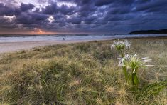 Sunrise on Tallow Beach Byron Bay
