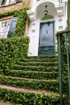 Ivy-Covered Steps #stairs
