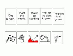 How to Plant a Flower Flow Map