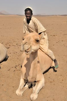 Bisharin nomad at well in the Bayuda Desert, Sudan. The Bayuda Desert is located north of modern Khartoum, Sudan, west of Kadabas, and south of the Nubian Desert, together making up part of the Sahara Desert's eastern flank. (V)