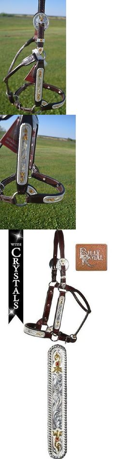 Halters 139601: Billy Royal Show Halter Mare Horse Congress Classic Cut Red Stones Silver Small -> BUY IT NOW ONLY: $307.96 on eBay!