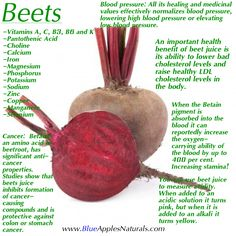 Beets have been known to elevate Glutathione production in the body. Glutathione is known as the bodies master antioxidant and detoxifier. Almost every cell in the body takes advantage of Glutathione in order to neutralize toxins and pull them into the colon for disposal. Also known to regulate blood pressure, lower bad cholesterol and increase LDL cholesterol, improve stamina, detox the liver and much more! Include these into your diet for some much added benefits! #Nutrition #Health #Diet…