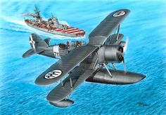 Imam Ro43 Italian Seaplane.