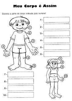 Pedagógiccos: Corpo humano