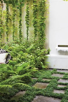 The Expansive Designs of Landscape Architect Thomas Woltz, , A carpet of green underfoot among the pavers, dense ferns reach out from their contained space, vertical growth to increase the garden's expanse - lus.