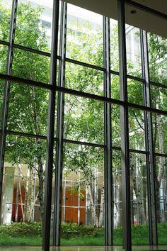 gallery the new york times building lobby garden hm white site architects cornelia. beautiful ideas. Home Design Ideas