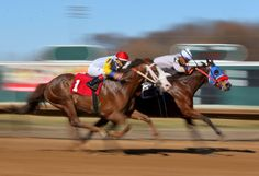 Photos: Fairmount Park Racetrack opens with its season Sports Figures, World Of Sports, The St, Horse Racing, Horses, Seasons, Park, Photos, Pictures