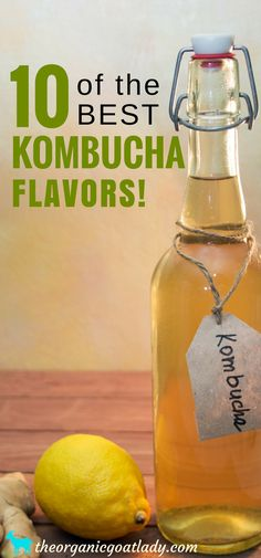 Kombucha Recipe: 10 Amazing Kombucha Flavors That You Will LOVE! Kombucha Recipe: 10 amazing kombucha flavors that are sure to become your new favorites! Do you love to try new kombucha flavors? Then you have come to the right place! Best Kombucha, Kombucha Flavors, Kombucha Scoby, How To Brew Kombucha, Probiotic Drinks, Making Kombucha, Kombucha Brewing, Kombucha Drink, Kombucha Cocktail