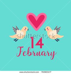 Valentine's Day card, banner, poster, background design. Pink heart, typography 14 February 2017 with cute funny birds in flat cartoon style; a vector illustration