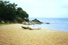 Chikale Beach