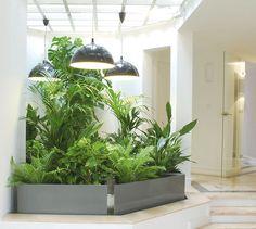 Un jardín de interior verdadero con los plantadores de ImageIn - IMAGE'IN - Noticias y comunicados de prensa