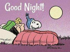 Lets Go Camping Quotes Friends 15 Ideas Snoopy Images, Snoopy Pictures, Peanuts Cartoon, Peanuts Snoopy, Peanuts Comics, Goodnight Snoopy, Snoopy Quotes, Charlie Brown And Snoopy, Snoopy And Woodstock