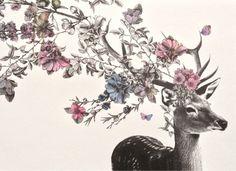 Deer with flowers Cerf avec fleurs