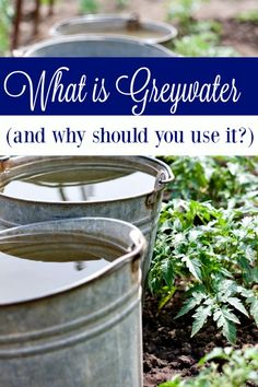 What is Greywater and Should You Use it to Save Money? - Do you know what greywater is? If not, you need to! It could be saving you hundreds each year instead of cost you money!