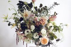 Image result for images of putnam and putnam flowers