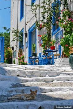 KOS...Yunanistan..