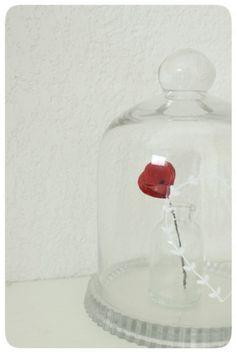 saint-valentin-9387.JPG