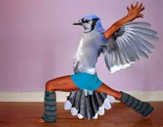 Birds With Arms - Yahoo Image Search Results