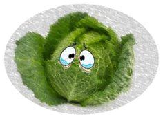 Cavolo e spinacio