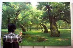 pinturas da natureza  Artista: Jung-Hwan An