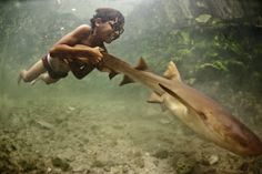 James Morgan's pictures of the Bajau. The Bajau Laut are some of the last marine nomads. An ethnic group of Malay origin, they have for centuries lived out their lives almost entirely at sea.