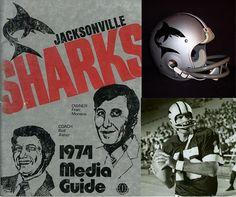 Big League City! 100 Years of Football in Jacksonville | Metro Jacksonville