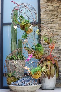 Phaelenopsis & Oncidium orchids, Ferns, Air plants, Bromeliad Aechmea, and Peruvian Cactus in stone containers to add a natural and rustic touch to the contemporary display