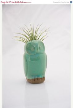 Owl air plant pod in mint by claylicious on Etsy, $15.30. Peanut would love this.