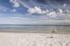 UtArt: Einsamer Strand - Bild auf Alu-Verbundplatte