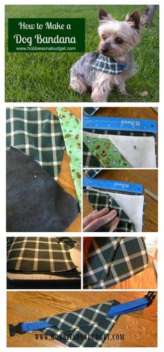 How to make a dog bandana!  Easy enough for the most novice sewing skill level!