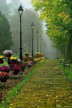 Beautiful images of nature Beautiful World, Beautiful Gardens, Beautiful Images, Beautiful Park, Simply Beautiful, Nature Images, Nature Photos, Natur Wallpaper, Foto Nature