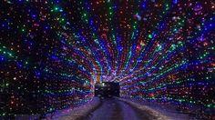 Light road in Wesley Clover Parks (5pm-10pm until Jan 6th, $25 per car)