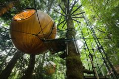 The Free Spirit Spheres on Vancouver Island, Canada   38 Pictures From The Most Bizarre Hotels Around The World