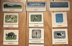 Montessorimaterial: Var lever djuren? Gratis nerladdning.