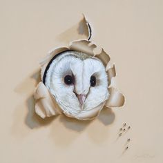 """Trompe-l'oeil Snowy Owl Whimsical Bird Oil Painting by Camille Engel, """"Who-o-o's There?"""" 