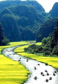 Tam Coc Bich Dong, Vietnam
