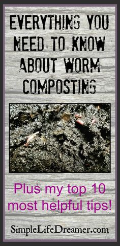 Food waste is a real problem! Turn your food waste into black gold compost for your garden with worms!  It's easy, can be done indoors and I swear it doesn't smell!