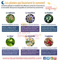 plantes_sommeil Nutrition Tips, Coffee Time, Better Life, Healthy Life, Guide, Zen, Sweet, Insomnia, Zinc Foods