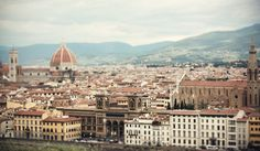 Ode to Italy- Florence