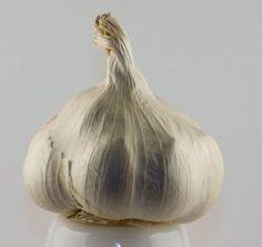 Infection Fighting Lemon Garlic Drink