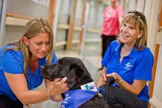 Orlando Health: Pet Volunteers