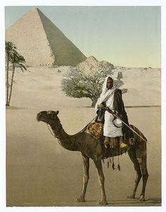 [Egypt.]**.