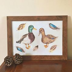 Art print of my original Mallards watercolour painting. The original art work was painted using artists quality watercolour on 140lb textured paper. The print is high quality giclee print on 140lb textured paper also with guaranteed long lasting colours. The print size is A4