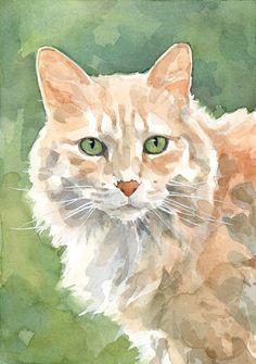 Aquarelle d'un chat orangé (auteur inconnu)