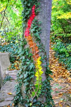Inspired by the work of Goldsworthy and the vivid colors seen around the Calvert campus with the change of the season, seventh grade artists also created temporary artworks using natural objects. Like Goldsworthy, we used photography as a form of documentation to capture the essence of the artworks.