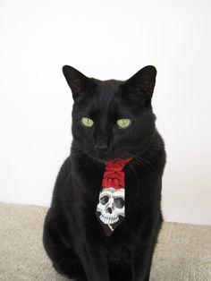 Cat Tie - Skulls n' Roses. $9.00, via Etsy.